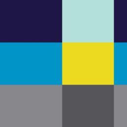 Startup branding color palette for Sky Republic Inc. rebrand
